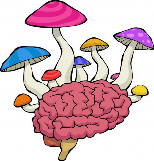 illustration of mushrooms growing out of a brain