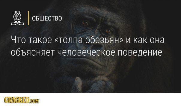 https://newochem.ru/wp-content/uploads/2016/06/oeFINLQXZbM-723x0.jpg