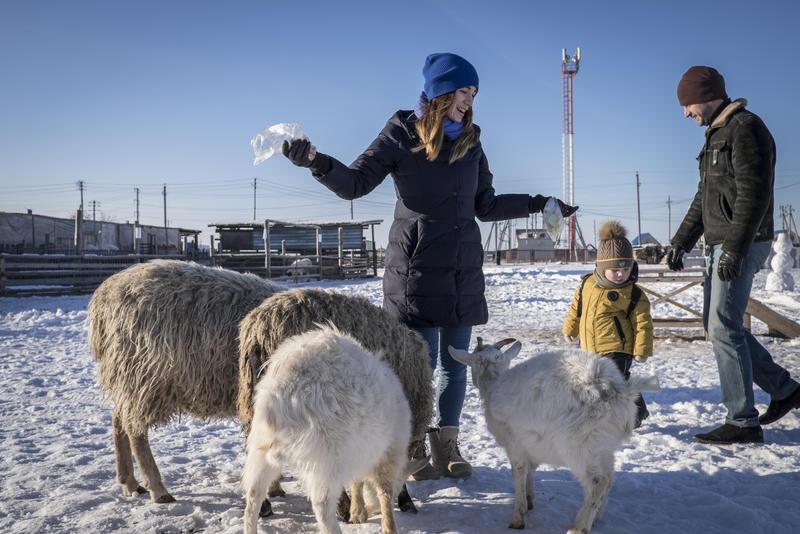 28-ми летняя Анастасия Реунова и ее парень Андрей Бобошка помогают ее двухлетнему сыну Степану кормить овец и козлов в контактном зоопарке Тюмени