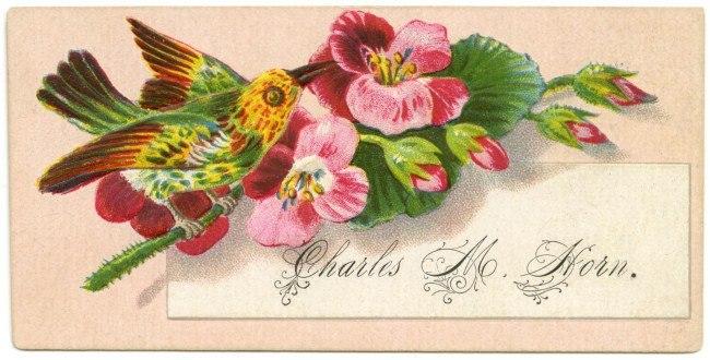 «Чарльз М. Хорн». Визитные карточки часто богато украшались, особо выделяли и имя владельца. Фото: из коллекции Алана Мэйса